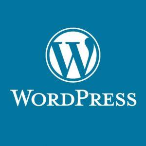 دانلود WordPress 11.6 – اپلیکیشن مدیریت وردپرس برای اندروید !