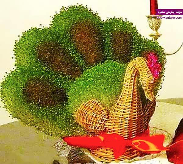 سبزه عید نوروز 98 | آموزش کاشتن انواع سبزه برای عید نوروز 98 (روش جدید)