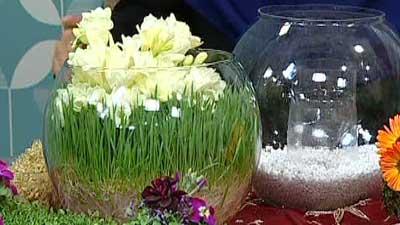 سبزه عید نوروز ۹۸ | آموزش کاشتن انواع سبزه برای عید نوروز ۹۸ (روش جدید)