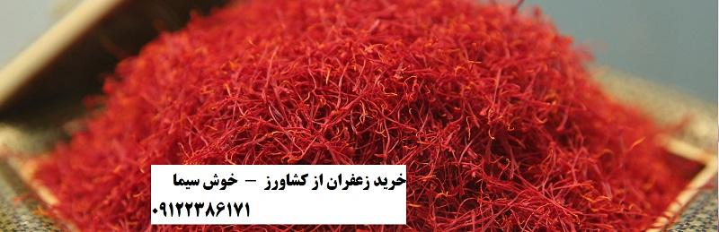 خرید زعفران از کشاورز به صورت عمده و فله